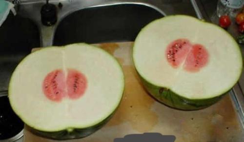 今儿一大早买个西瓜就被骗了╮(╯▽╰)╭