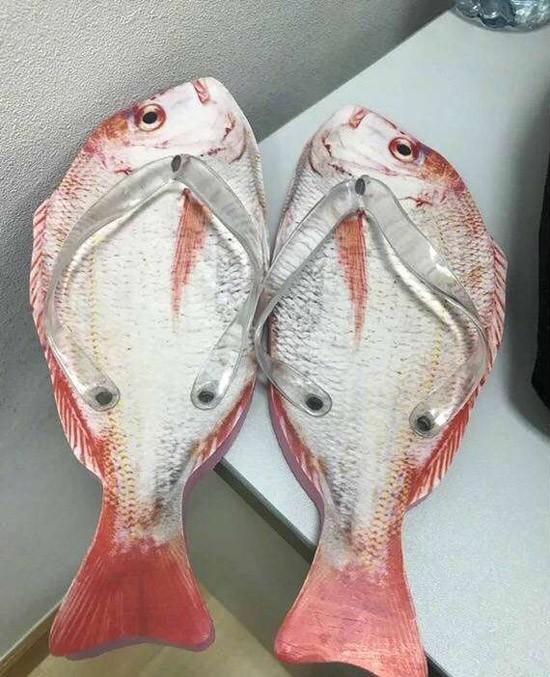 咸鱼从此无翻身之日
